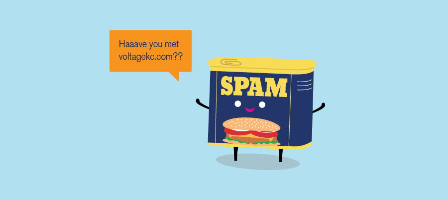 Referral Spam: The 411