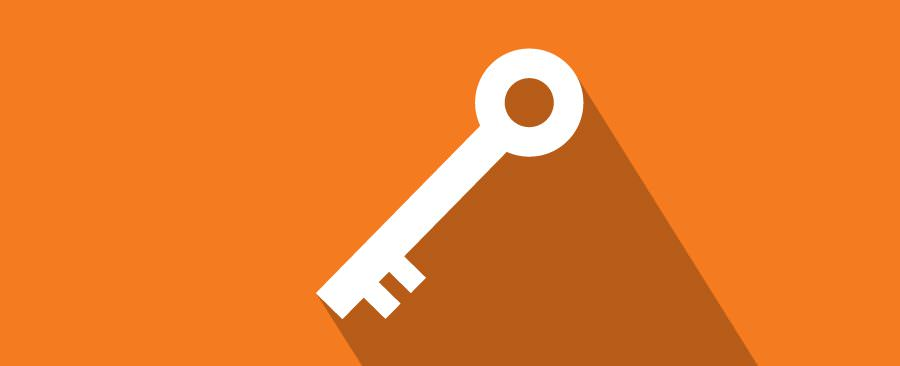 The actuall key, get it!?